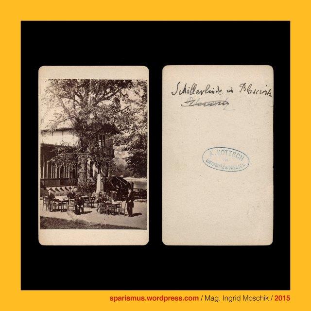august kotzsch photograph in loschwitz bei dresden cdv circa 1870 schillers linde in blasewitz bei dresden