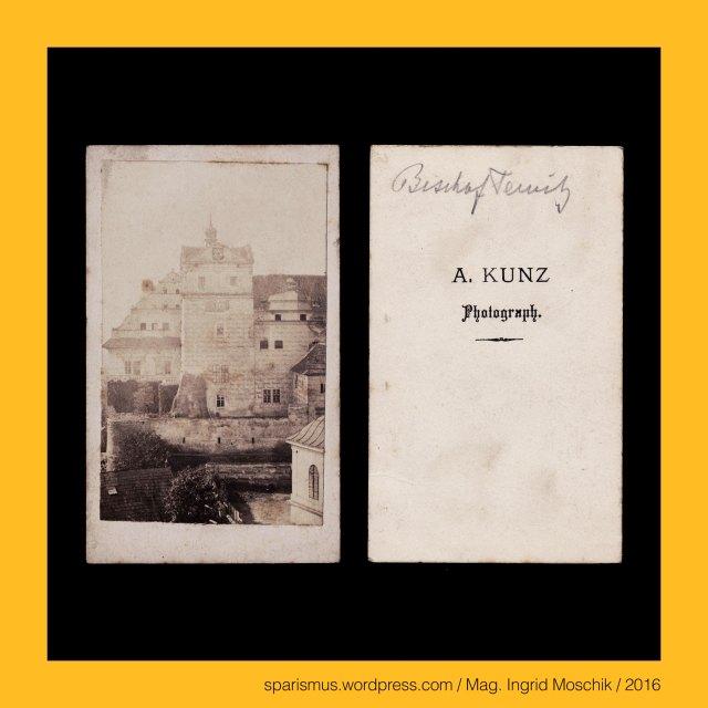 """A. KUNZ, A. Kunz – altösterreichischer Photograph, Bischofteinitz, Zamek Horsovsky Tyn = Castle Horsovsky Tyn =  Schloss Bischofteinitz (Mitte 13. Jh. bis 1547 bis heute), Zamek Horsovsky Tyn – Etymology – Tyn = Tynec = Teinitz """"Eingezäunte"""" = engl. town - Proto-Germanic *tuna- """"fence enclosure Zaun"""", Zamek Horsovsky Tyn – Etymology 2 – Gorsov = Horsov = Horschau """"aus- oder abgestecktes Land"""" – PIE *ghaiso- """"spear stick Gehre Ger- gore"""", The Austrian Federal Chancellery, Bundeskanzleramt Österreich, BKA, Ballhausplatz 2, Sparismus, Sparen ist muss,  Sparism, sparing is must Art goes politics, Zensurismus, Zensur muss sein, Censorship is must, Mag. Ingrid Moschik, Mündelkünstlerin, ward artist, Staatsmündelkünstlerin, political ward artist, Österreichische Staatsmündelkünstlerin, Austrian political ward artist"""