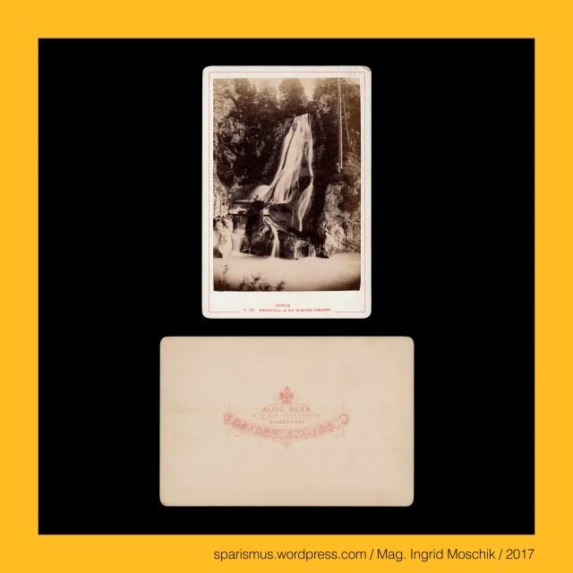 """Alois Beer – k.u.k. Marinefotograf, Beer & Mayer (Graz um 1870 bis etwa 1880), Alois Beer – Fotograf und Verleger in Wien Klagenfurt Graz, Alois Beer (1840 Budapest – 1916 Klagenfurt) – österreichischer Photograph Marinefotograf Photoverleger, Ferdinand Mayer (1845 Graz – 1916 Graz) - österreichischer Photograph, Beer & Mayer (Wien etwa 1865 bis um 1870), Beer & Mayer (Graz um 1870 bis etwa 1880), Tarvisio = Tarvis = Trbiz - Orrido dello Slizza = Schlitza-Schlucht – """"starrwandiges Tal der Gailitz"""" PIE *ghers- """"stiff starr"""" – Ger - Horror, Tarvisio = Tarvis = Trbiz – Slizza = Gailitz = Ziljica = Gailica = Schlitza, Tarvisio = Tarvis = Trbiz – Slizza = Gaillitz = Ziljica = Gailica = Schlitza = ca. 30 km langer rechter Seitenfluss der Gail in Italien und Österreich, Tarvisio = Tarvis = Trbiz – Slizza = Gail = Geile = Gila = Zelia = Zeglia = Cellia """"die Überschwemmende"""" -  Etymologie *(v)leiqu- """"nass feucht"""" - Licus – Lech, Tarvisio = Tarvis = Trbiz – Slizza = Gail = Geile = Gila = Zelia = Zeglia = Cellia – ca. 122 km langer rechter Nebenfluss der Drau, Tarvisio = Tarvis = Trbiz - Orrido dello Slizza = Schlitza-Schlucht, Tarvisio = Tarvis = Trbiz – ca. 5000 Einwohner zählende Gemeinde im Kanaltal in der Provinz Udine , Tarvisio = Tarvis = Trbiz – *taruisia """"Gegend der Auerochsen"""" – Etymology 1 Celtic *taruo- """"aurochs"""" – PIE *(s)tawro- """"wild bull steer Stier"""", Tarvisio = Tarvis = Trbiz – taurisium - *taurisci """"Ort der Bergbewohner  - Etymology 2 Celtic *taur- """"hill Berg tower torre Turm"""" – Treviso – Turin, Tarvisio = Tarvis = Trbiz – Via Bamberga – """"Bamberger Strasse"""" – 1002 bis 1759 unter der Herrschaft des Hochstifts Bamberg, The Austrian Federal Chancellery, Bundeskanzleramt Österreich, BKA, Ballhausplatz 2, Sparismus, Sparen ist muss,  Sparism, sparing is must Art goes politics, Zensurismus, Zensur muss sein, Censorship is must, Mag. Ingrid Moschik, Mündelkünstlerin, ward artist, Staatsmündelkünstlerin, political ward artist, Österreichische Staatsmündelkünstlerin, A"""