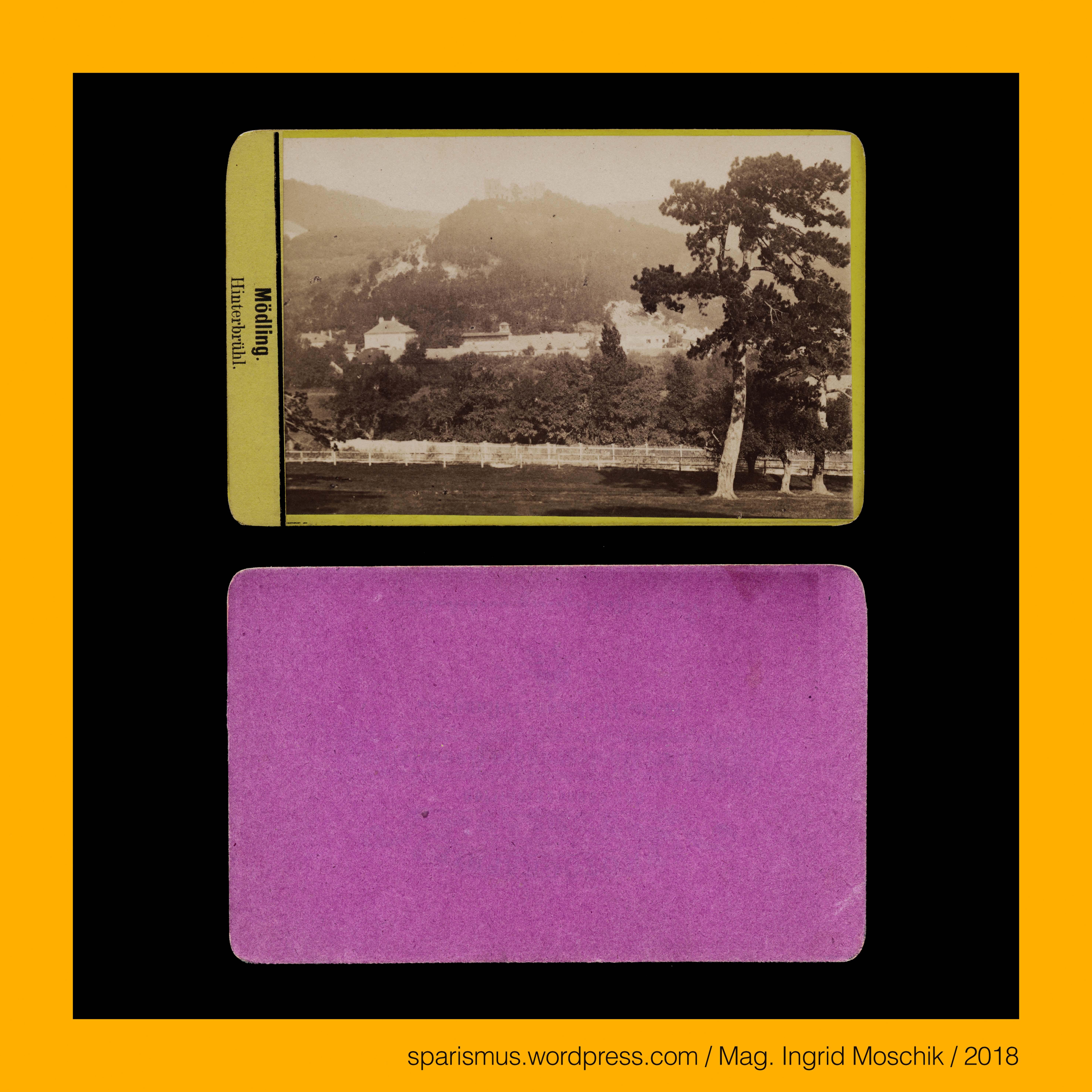 weingartshofer in moedling circa 1880 hinterbruehl blick von foehrenberge zur burgruine moedling