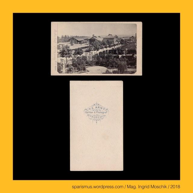 """V. C. Arnt - """"V. C. ARNT - Optiker & Photograf - TROPPAU"""" (1860-70er), Arnt = Arndt = Arnd = Arndius = Arnold – Adler-Walter Etymolgie ahd. arn """"Adler"""" + adh. wald """"Walter Verwalter Herrscher"""", Opava = Troppau, Opava = Troppau (1325) – """"an der Oppau"""" - Etymologie 1 """"an der Oppau"""" - Opavia (1195), Opava = Troppau – circa 58000 Einwohner zählende Stadt am rechten Ufer der Oppa in der Mährisch-Schlesischen Region in Tschechien, Opava = Troppau – 1847 Anbindung an die Kaiser-Ferdinands-Nordbahn von Wien nach Krakau, Opava = Troppau – 1851 Errichtung eines Bahnhofs an der Kaiser-Ferdinands-Nordbahn von Wien nach Krakau, Opava = Opawa = Oppa – 131 langer linker Nebenfluss der Oder, Opava = Opawa = Oppa – Opa – Upa – Vpa PIE *opa / *apa / *h-ap- """"Wasser voda aqua water"""" – Sanskrit Ap Ab """"Wasser"""" – Apah Punjab Apam Napat, Austrian political ward artist, Mag. Ingrid Moschik – Spurensicherung """"IM NAMEN DER REPUBLIK"""", Dr. Timm Starl (*1939 Wien - ) - österreichischer Kulturwissenschaftler Fotohistoriker Ausstellungskurator FOTOGESCHICHTE-Gründer"""